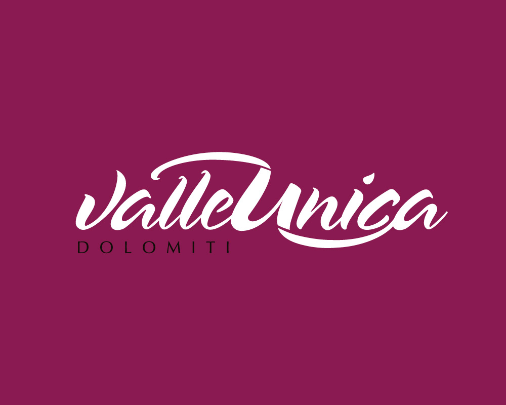 Valle Unica Logo